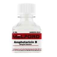 Amphotericin B 250ug/ml Solution