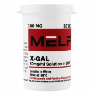 X-GAL 50mg/ml Solution