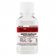 HEPES Buffered Saline Solution 2X