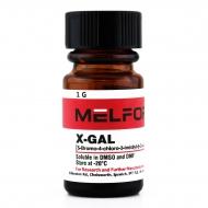 X-GAL