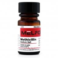 Methicillin Sodium Salt