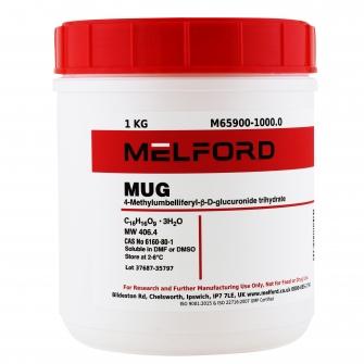 MUG, 1 KG
